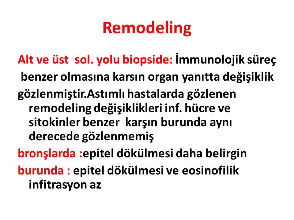 Remodeling Alt ve üst sol. yolu biopside: İmmunolojik süreç benzer olmasına karsın organ yanıtta değişiklik gözlenmiştir.Astımlı hastalarda gözlenen r