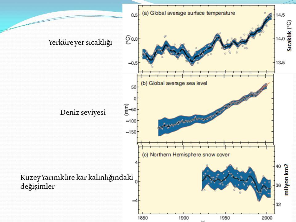 Kuzey Yarımküre kar kalınlığındaki değişimler Deniz seviyesi Yerküre yer sıcaklığı