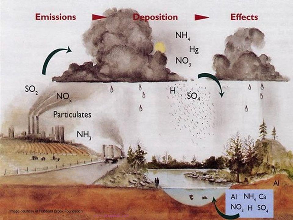  Fosil yakıtlar havamızı kirletmekte olan, kükürtdioksit, azotoksit, partikül madde ve hidrokarbon gibi gazlar yaymaktadır, bu kirleticiler atmosferde çeşitli kimyasal reaksiyonlara uğrayarak zamanla çeşitli doğal etkenler sayesinde çok uzaklara taşınabilmektedir.
