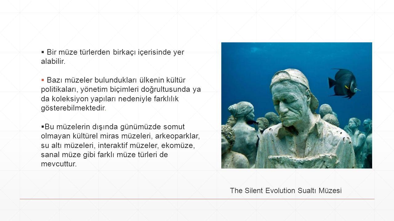  Bir müze türlerden birkaçı içerisinde yer alabilir.
