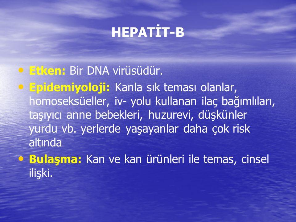 HEPATİT-B Etken: Bir DNA virüsüdür. Epidemiyoloji: Kanla sık teması olanlar, homoseksüeller, iv- yolu kullanan ilaç bağımlıları, taşıyıcı anne bebekle