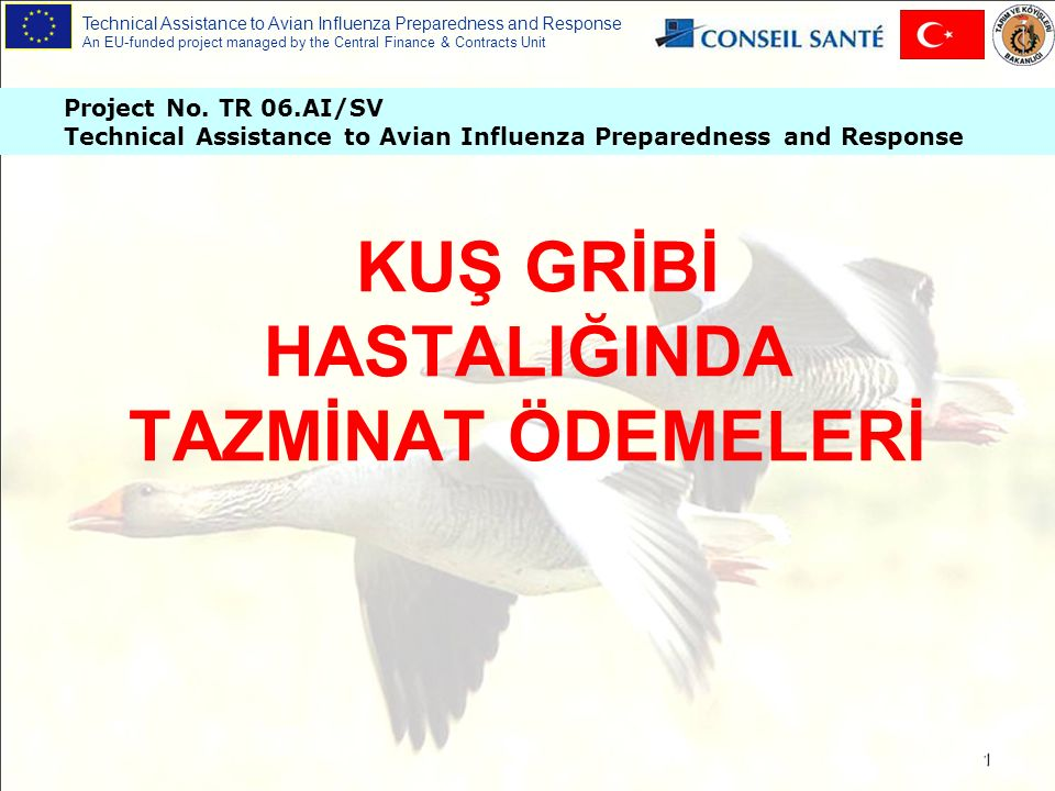 Technical Assistance to Avian Influenza Preparedness and Response An EU-funded project managed by the Central Finance & Contracts Unit 2 Tazminat Ödemeleri Nedir .
