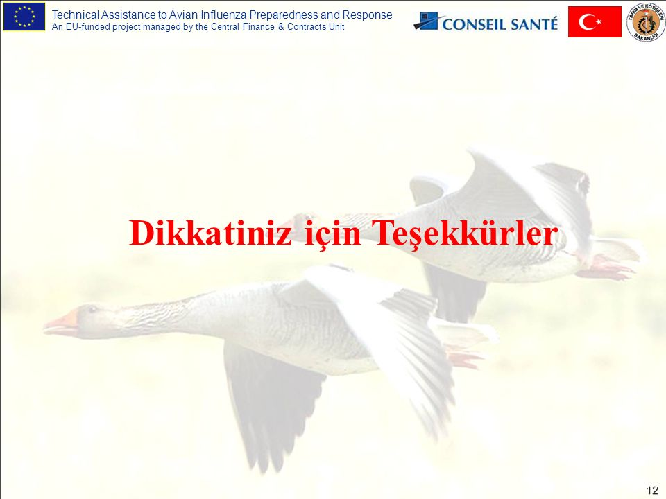 Technical Assistance to Avian Influenza Preparedness and Response An EU-funded project managed by the Central Finance & Contracts Unit 12 Dikkatiniz için Teşekkürler