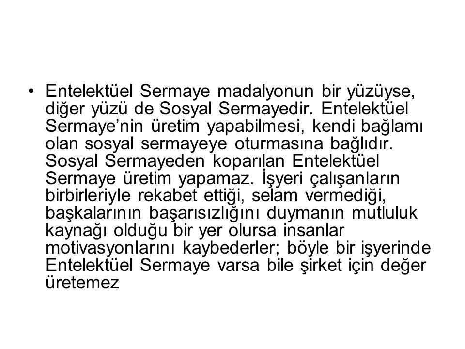 Entelektüel Sermaye madalyonun bir yüzüyse, diğer yüzü de Sosyal Sermayedir.