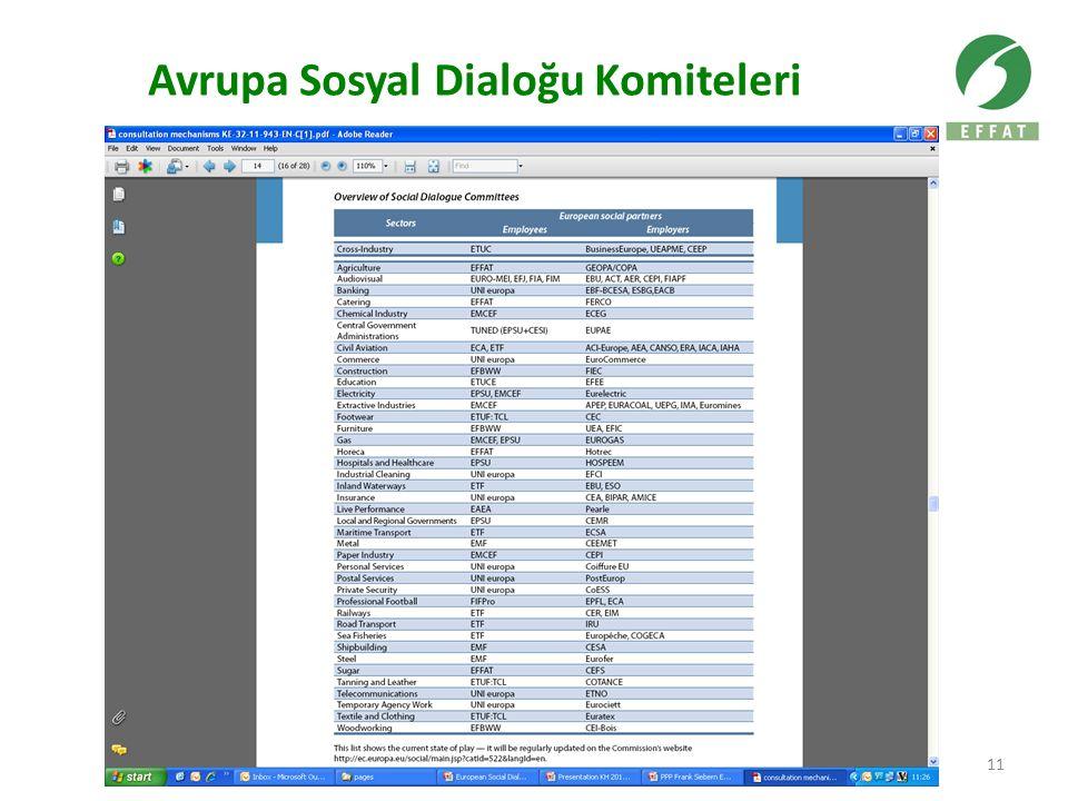 Avrupa Sosyal Dialoğu Komiteleri 11
