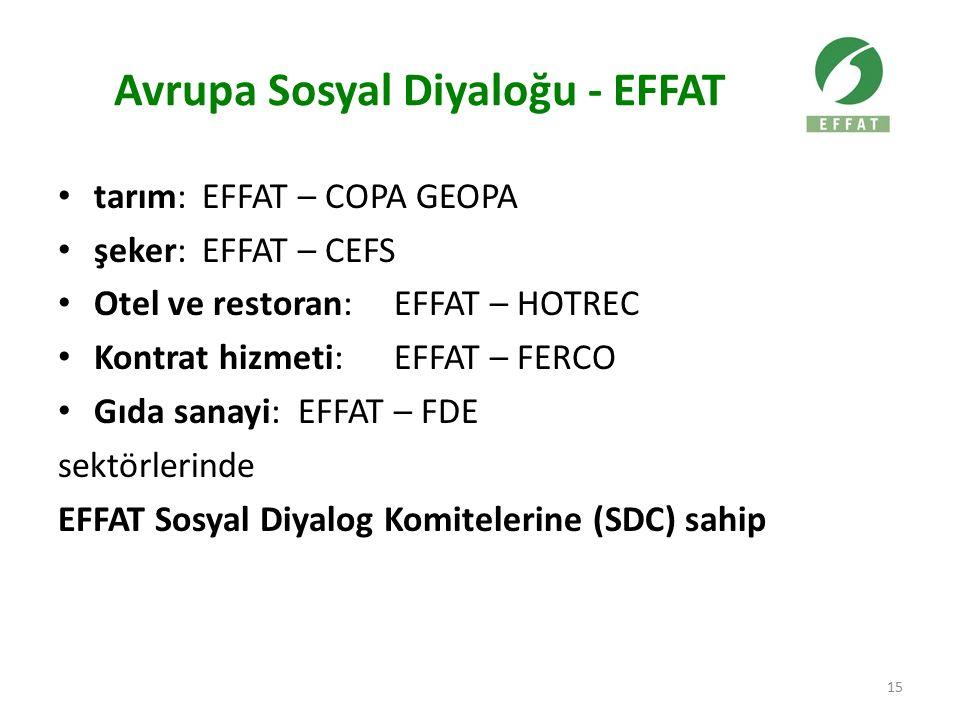 Avrupa Sosyal Diyaloğu - EFFAT tarım: EFFAT – COPA GEOPA şeker: EFFAT – CEFS Otel ve restoran: EFFAT – HOTREC Kontrat hizmeti: EFFAT – FERCO Gıda sanayi: EFFAT – FDE sektörlerinde EFFAT Sosyal Diyalog Komitelerine (SDC) sahip 15
