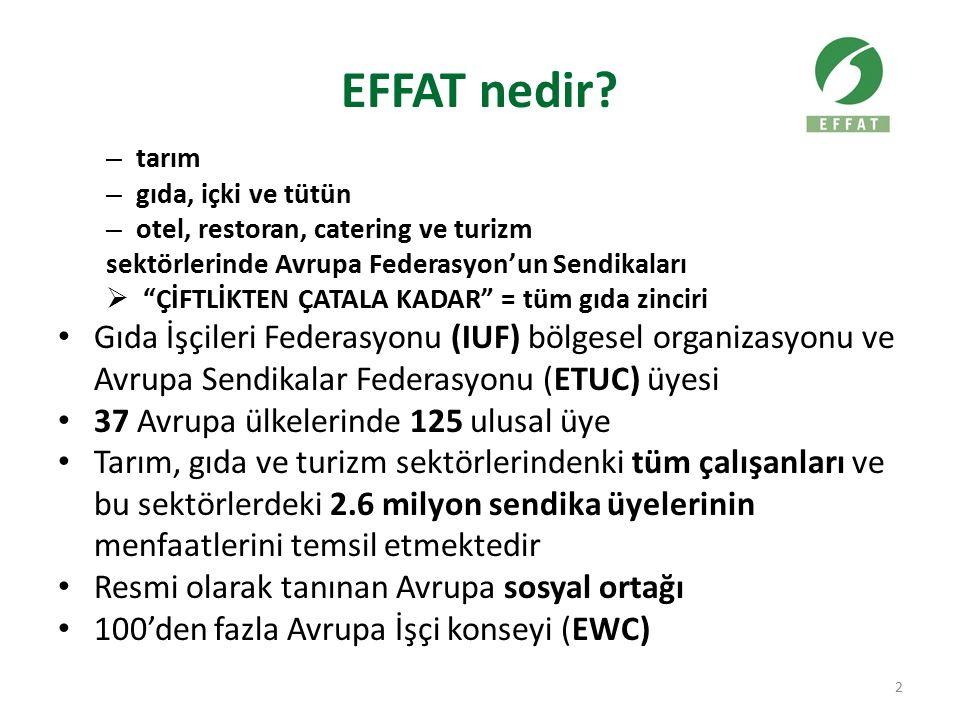 Geçici Acenta işi (TAW) üzerinde EFFAT Prensipleri İstihdamın ana şekli açık-kapalı ve dolaysız istihdam olmalı TAW ile ilgili her şirketle açık anlaşmlar gerekmektedir Eşit muamele (AB Direktifi) TAW sürekli işin yerini almayacaktır Uygulanılabilir yazılı çalışma kontratı TAW'ın kullanımı için tanımlanmış sınırlar (maksimum %10) Sadece sertifikalı TWA ile işbirliği İlk TAW'a mevcut işyerleri tekli edilecek 23