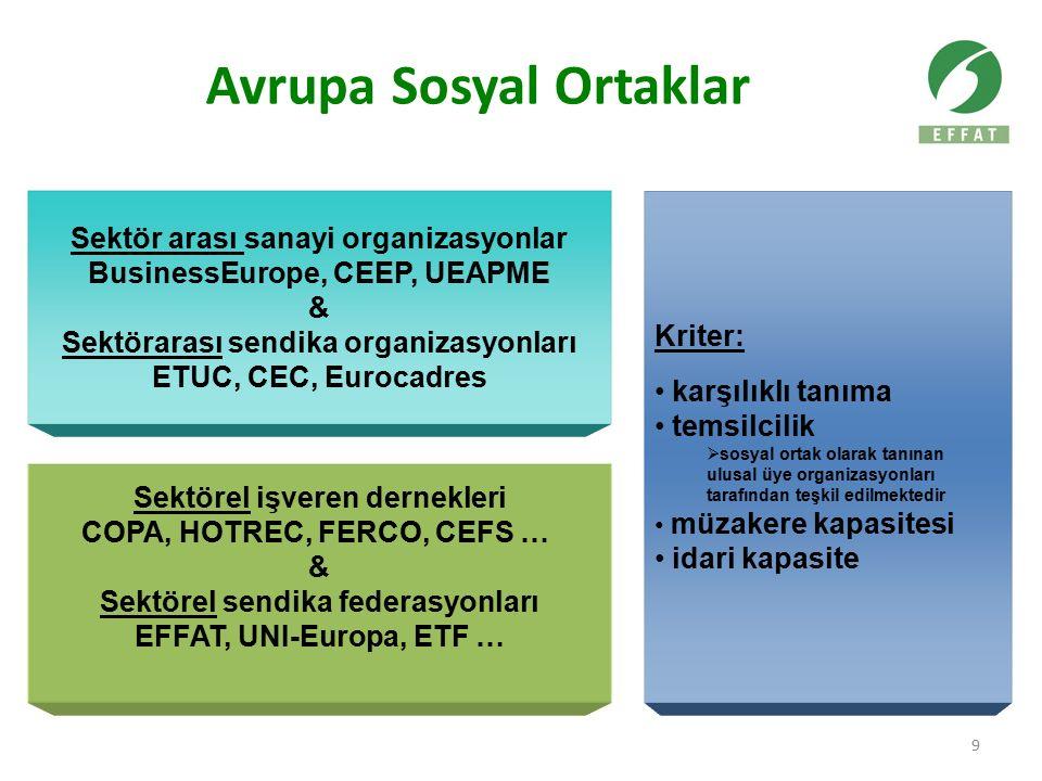 9 Sektör arası sanayi organizasyonlar BusinessEurope, CEEP, UEAPME & Sektörarası sendika organizasyonları ETUC, CEC, Eurocadres Sektörel işveren derne
