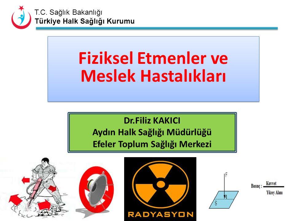 T.C.Sağlık Bakanlığı Türkiye Halk Sağlığı Kurumu İzin verilebilir doz..