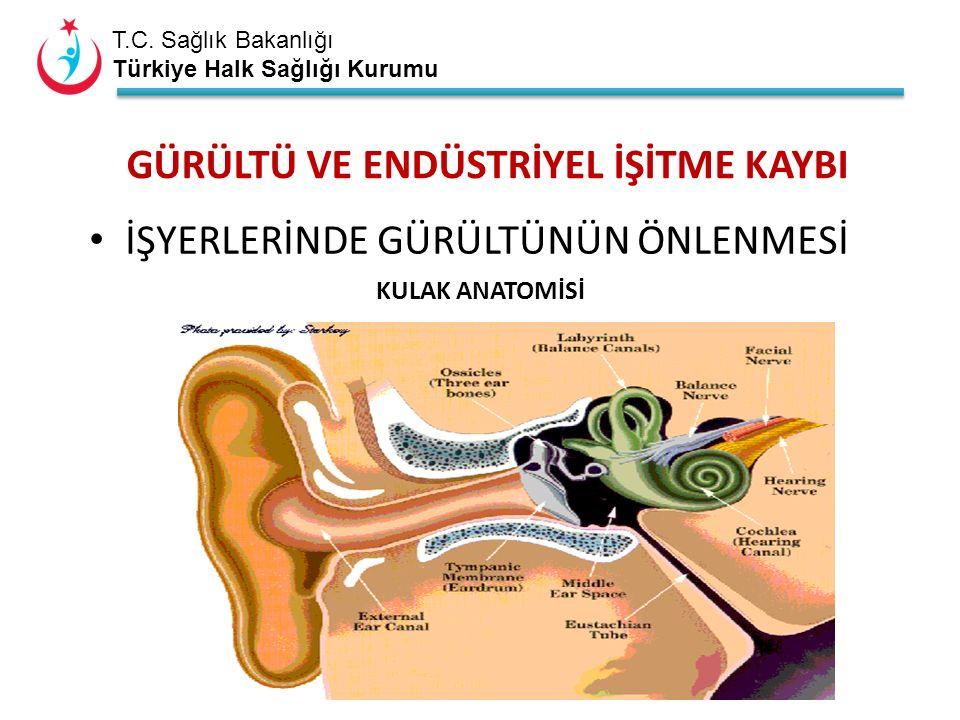 T.C. Sağlık Bakanlığı Türkiye Halk Sağlığı Kurumu Ölçüm Termal konfor ölçümleri