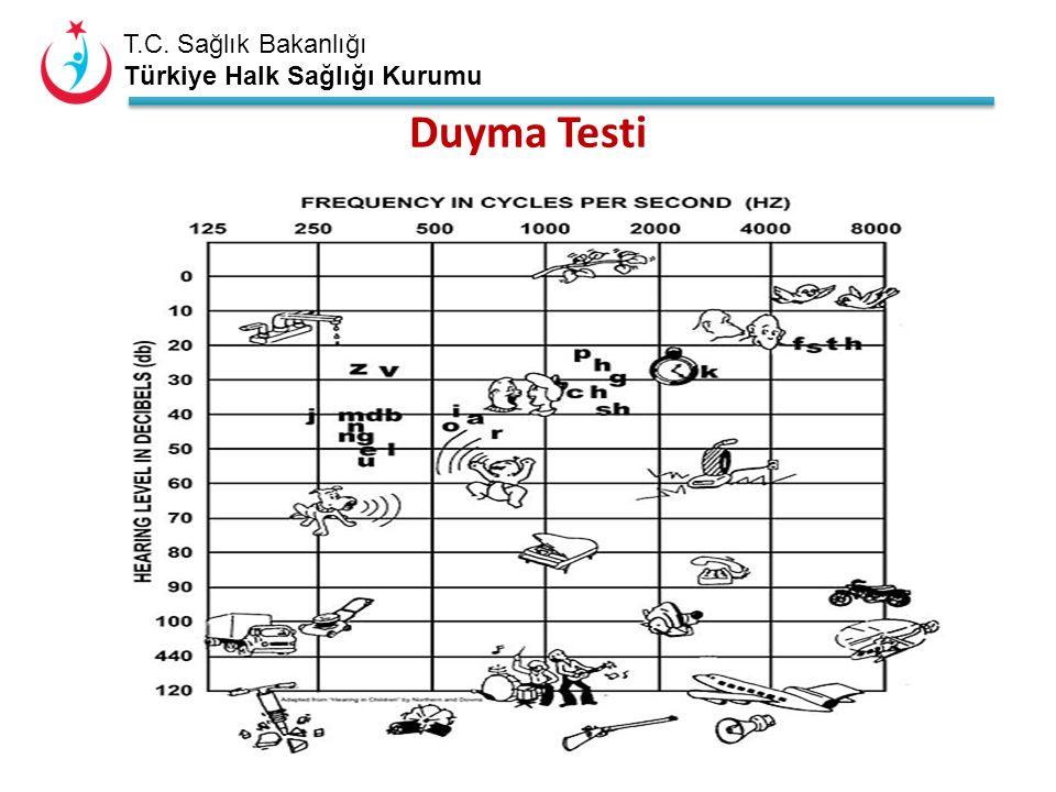 T.C. Sağlık Bakanlığı Türkiye Halk Sağlığı Kurumu Sensorinöral tip