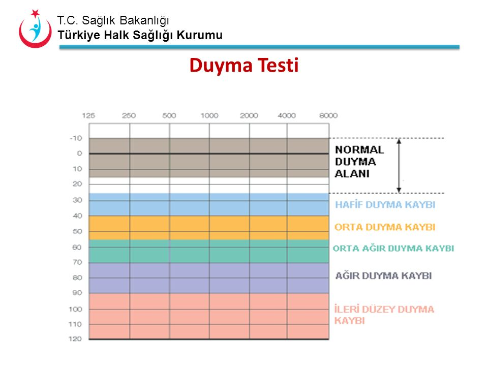 T.C.Sağlık Bakanlığı Türkiye Halk Sağlığı Kurumu Duyma Kaybı .