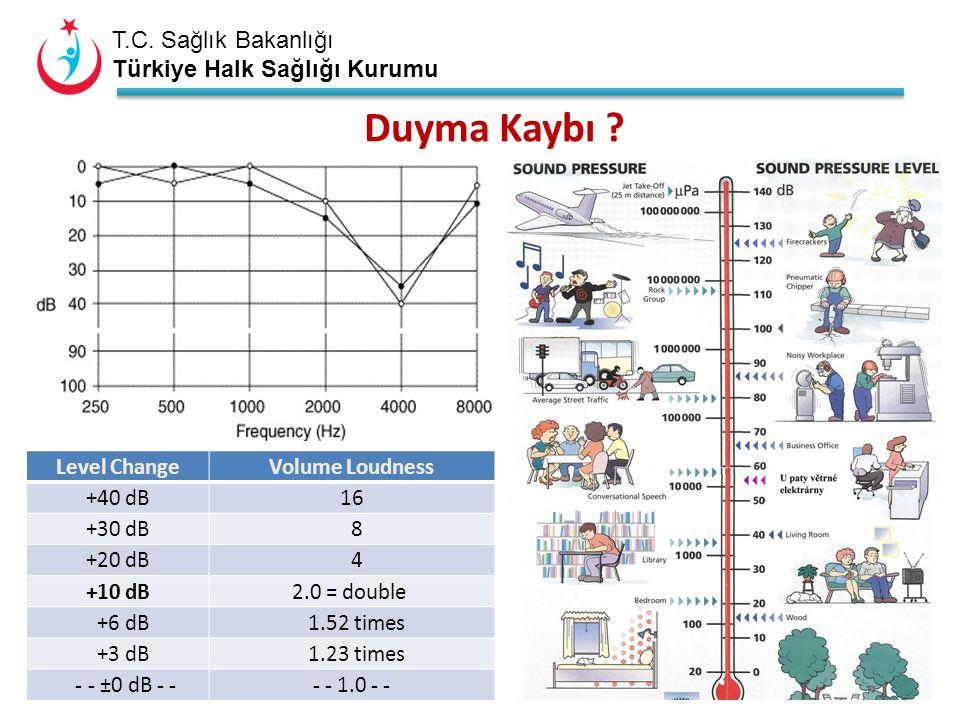T.C.Sağlık Bakanlığı Türkiye Halk Sağlığı Kurumu Ölçümü..