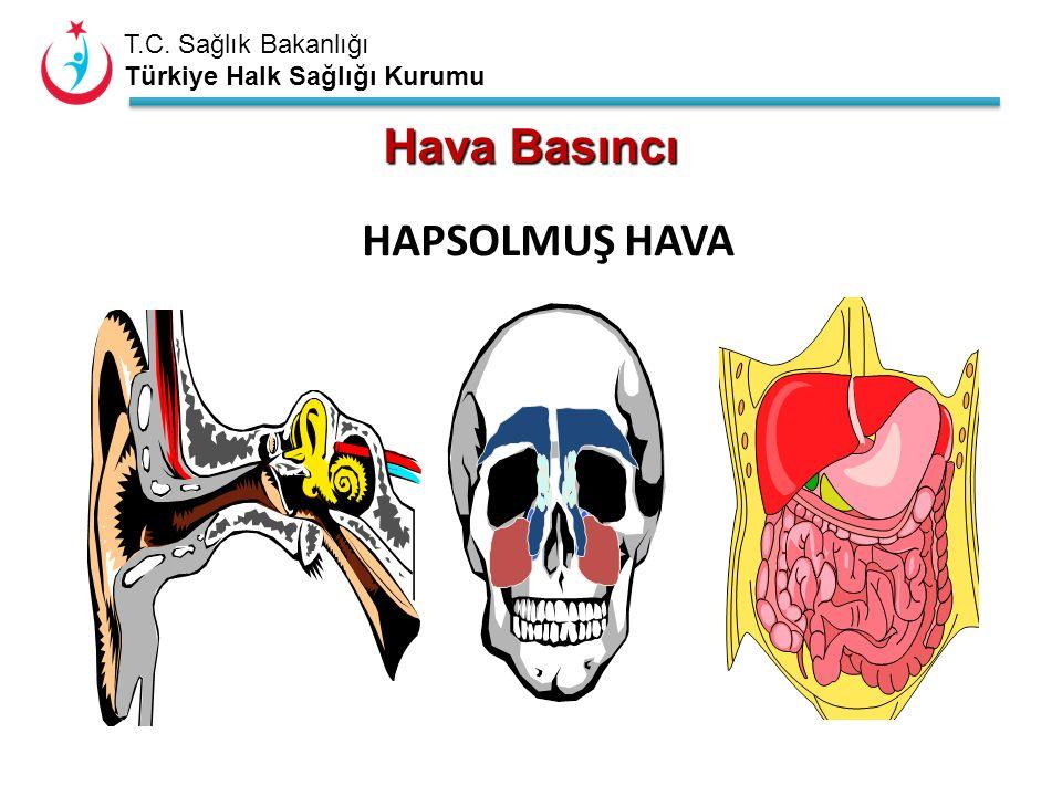 T.C. Sağlık Bakanlığı Türkiye Halk Sağlığı Kurumu Hava Basıncı HAPSOLMUŞ HAVA