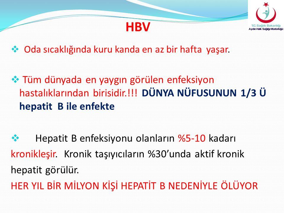 HBV  Oda sıcaklığında kuru kanda en az bir hafta yaşar.  Tüm dünyada en yaygın görülen enfeksiyon hastalıklarından birisidir.!!! DÜNYA NÜFUSUNUN 1/3