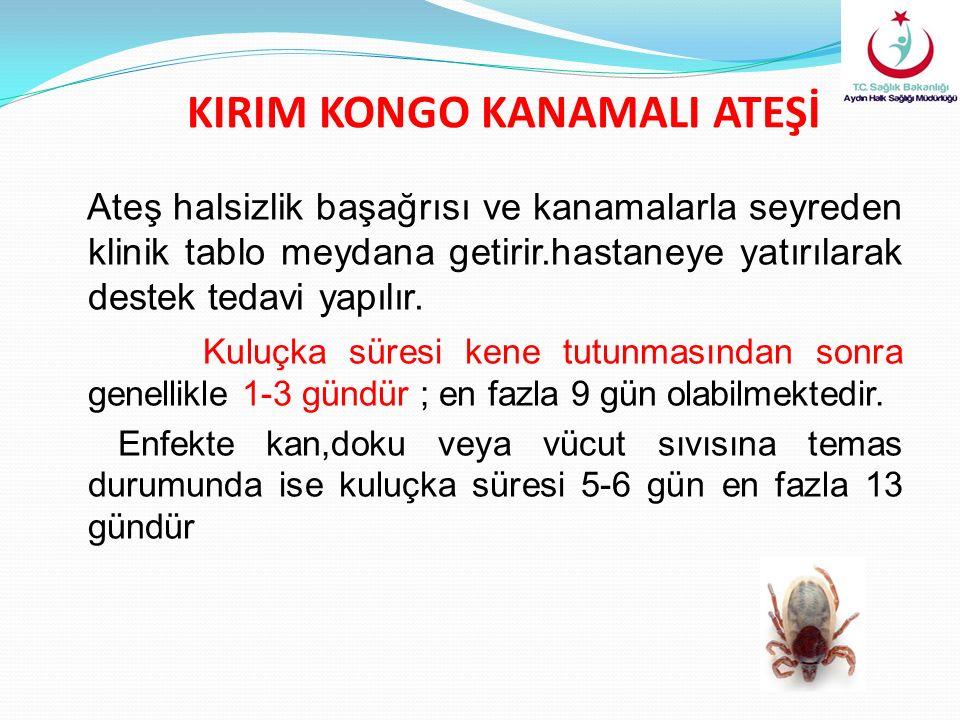 KIRIM KONGO KANAMALI ATEŞİ Ateş halsizlik başağrısı ve kanamalarla seyreden klinik tablo meydana getirir.hastaneye yatırılarak destek tedavi yapılır.