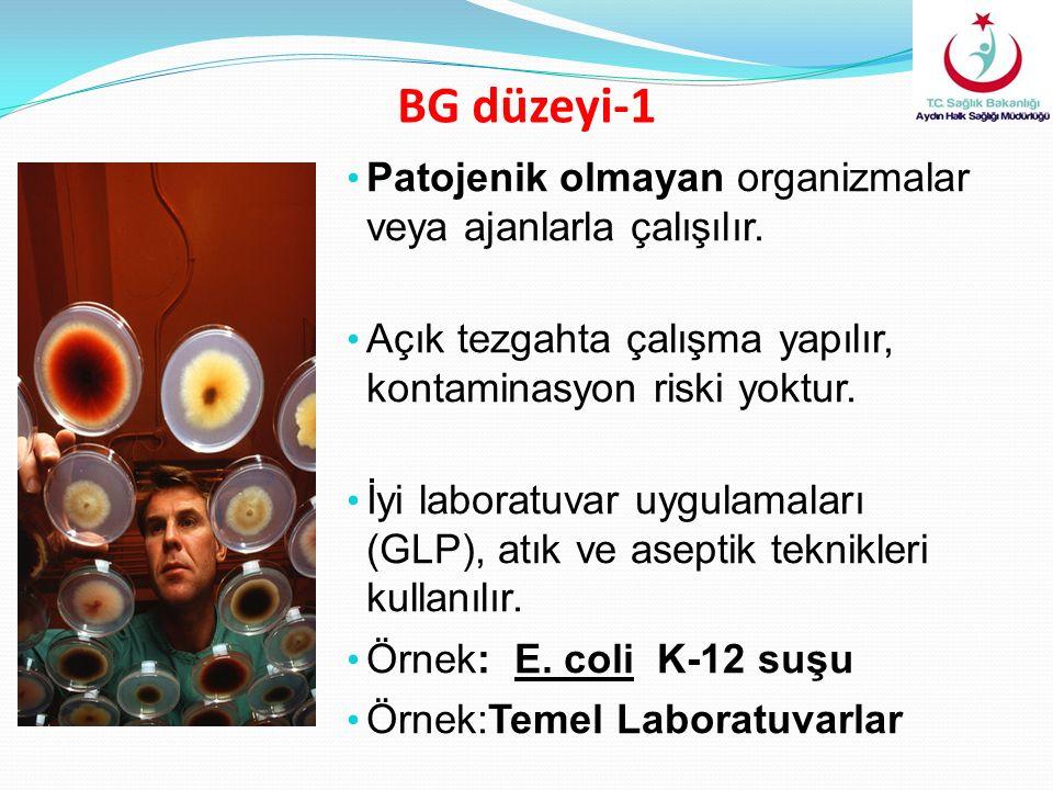 BG düzeyi-1 Patojenik olmayan organizmalar veya ajanlarla çalışılır. Açık tezgahta çalışma yapılır, kontaminasyon riski yoktur. İyi laboratuvar uygula