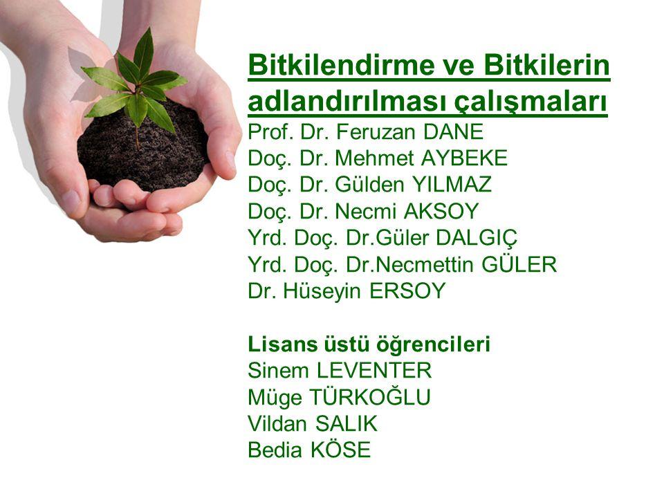 Bitkilendirme ve Bitkilerin adlandırılması çalışmaları Prof.