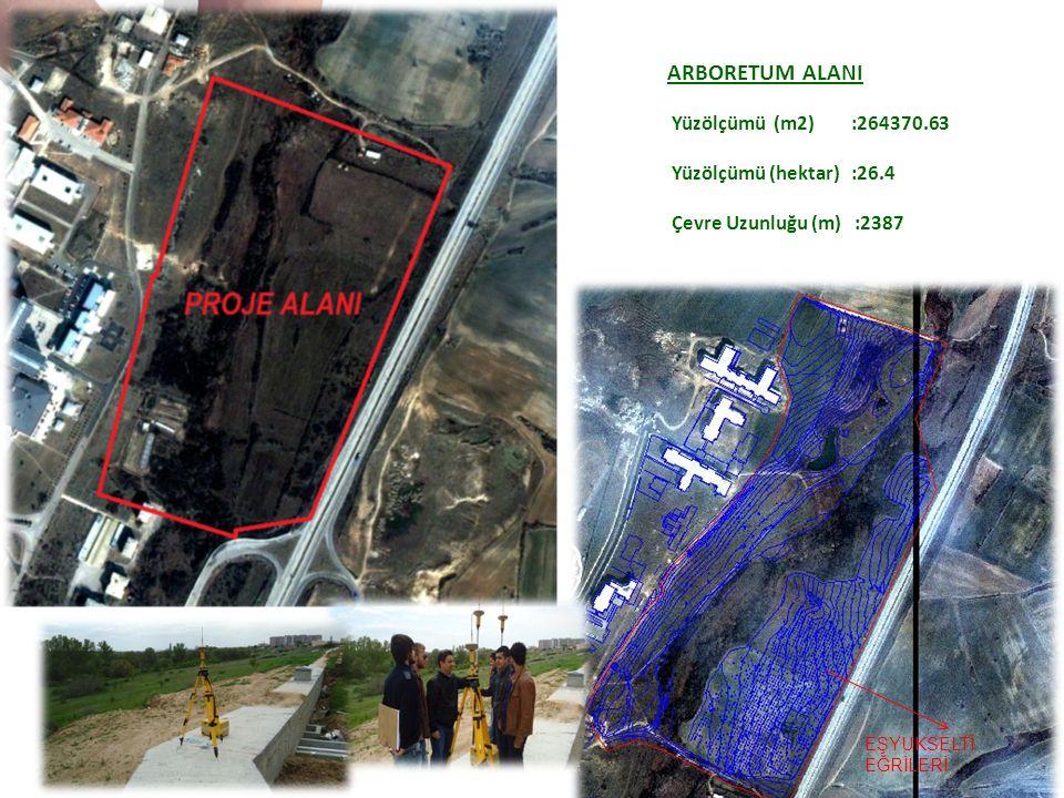 ARBORETUM ALANI Yüzölçümü (m2) :264370.63 Yüzölçümü (hektar) :26.4 Çevre Uzunluğu (m) :2387 EŞYUKSELTİ EĞRİLERİ