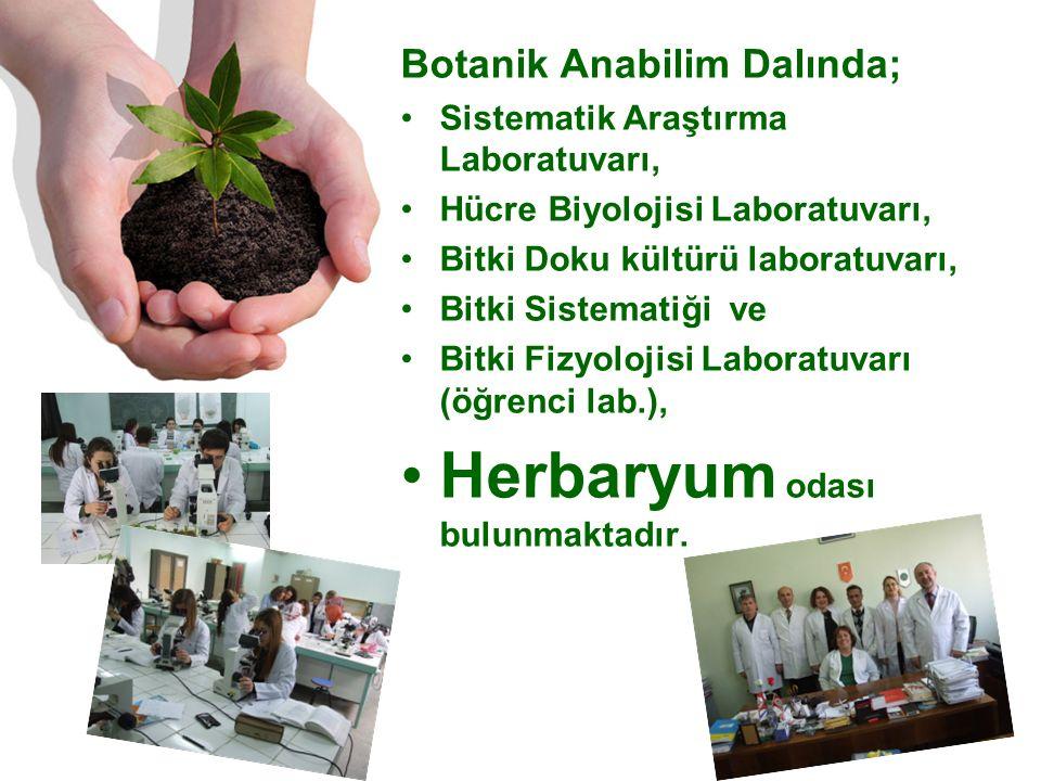 Botanik Anabilim Dalında; Sistematik Araştırma Laboratuvarı, Hücre Biyolojisi Laboratuvarı, Bitki Doku kültürü laboratuvarı, Bitki Sistematiği ve Bitki Fizyolojisi Laboratuvarı (öğrenci lab.), Herbaryum odası bulunmaktadır.