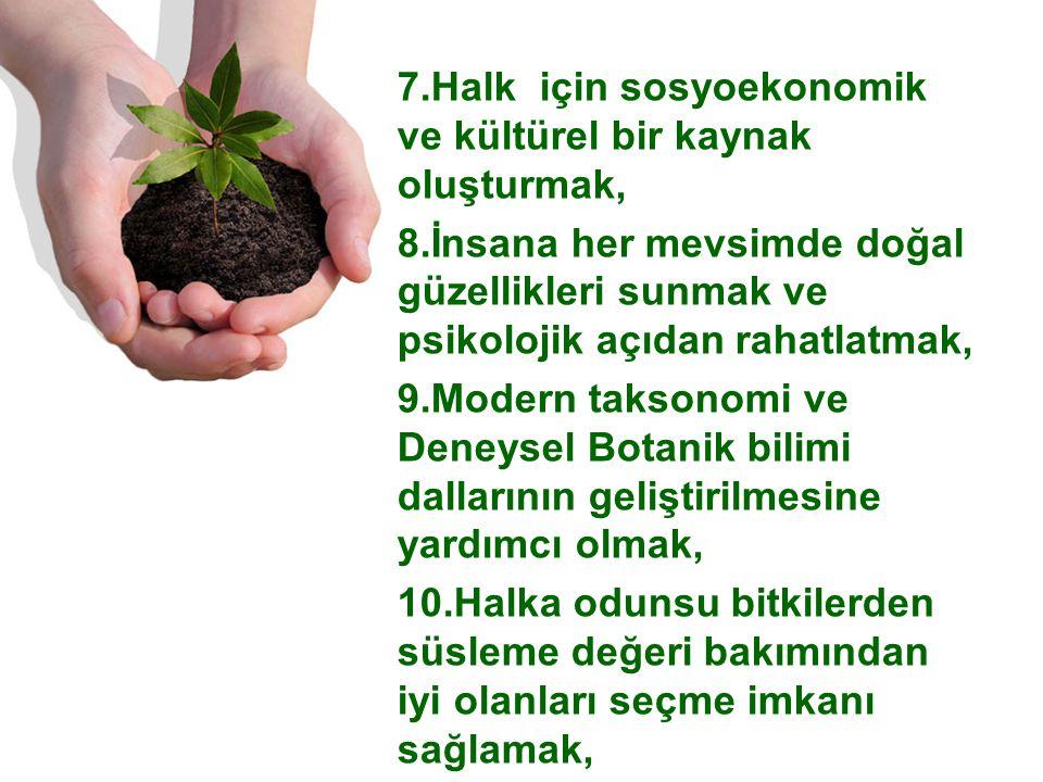7.Halk için sosyoekonomik ve kültürel bir kaynak oluşturmak, 8.İnsana her mevsimde doğal güzellikleri sunmak ve psikolojik açıdan rahatlatmak, 9.Modern taksonomi ve Deneysel Botanik bilimi dallarının geliştirilmesine yardımcı olmak, 10.Halka odunsu bitkilerden süsleme değeri bakımından iyi olanları seçme imkanı sağlamak,