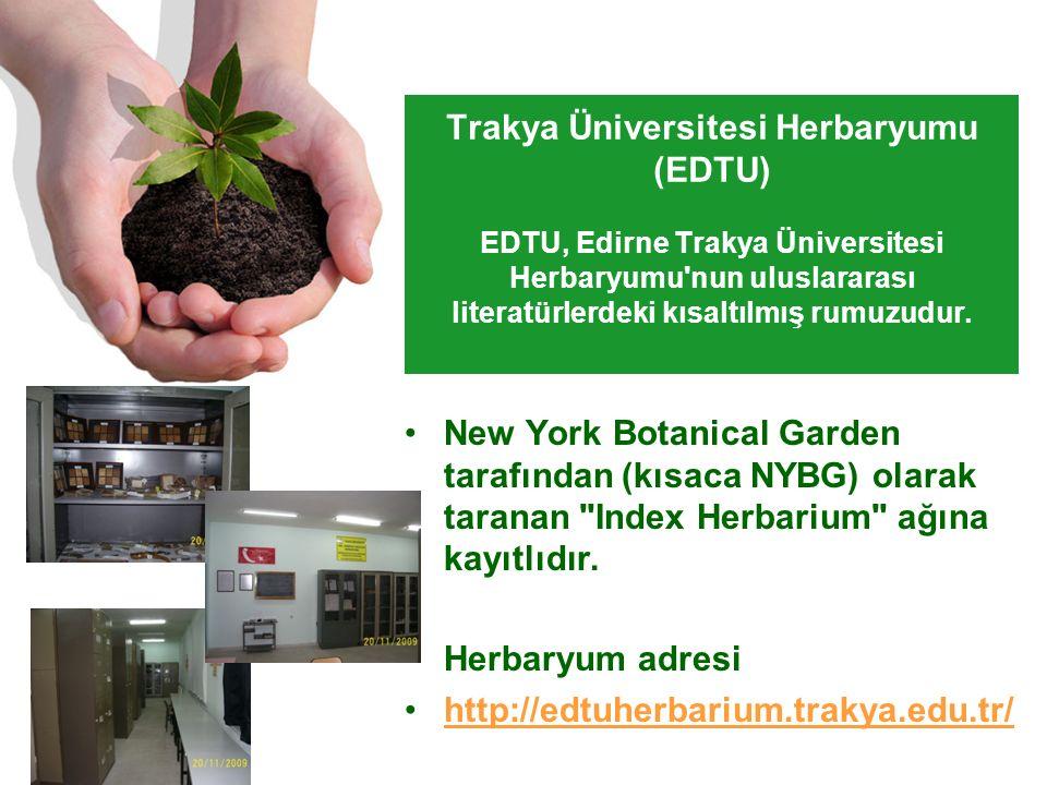 Trakya Üniversitesi Herbaryumu (EDTU) EDTU, Edirne Trakya Üniversitesi Herbaryumu nun uluslararası literatürlerdeki kısaltılmış rumuzudur.