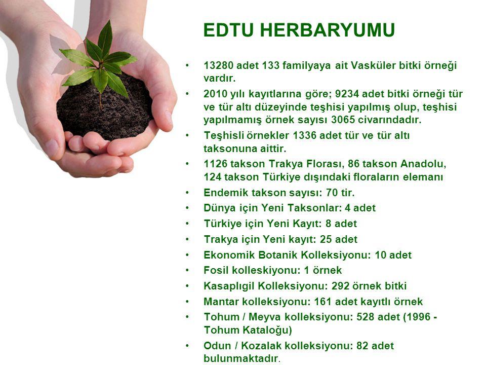 13280 adet 133 familyaya ait Vasküler bitki örneği vardır.