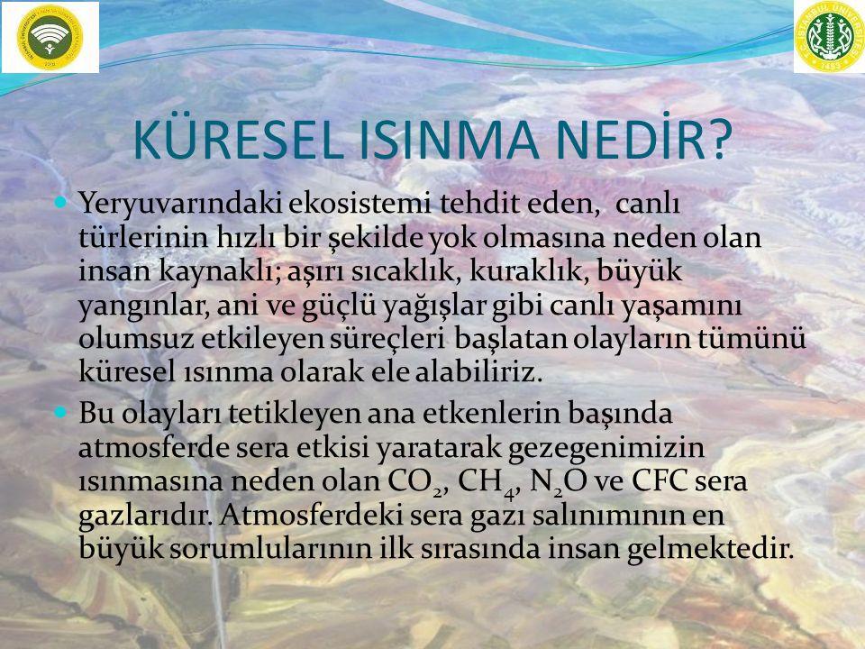 auzef.istanbul.edu.tr 54