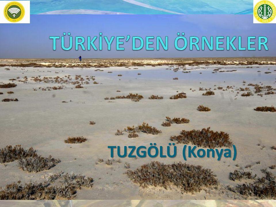 TUZGÖLÜ (Konya)