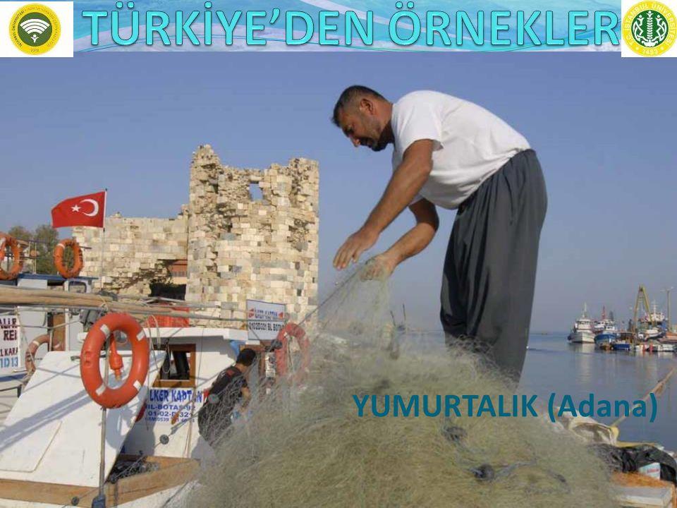 YUMURTALIK (Adana)