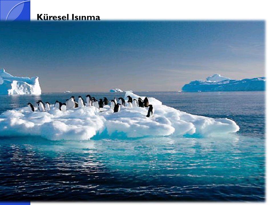 Küresel Isınma Atmosfer salınan karbondioksit, kloroflorokarbonlar ve öteki radyoaktif sera gazı emisyonlar nedeniyle yerin yüzey sıcaklıklarındaki artış küresel ısınma olarak tanımlanmaktadır.