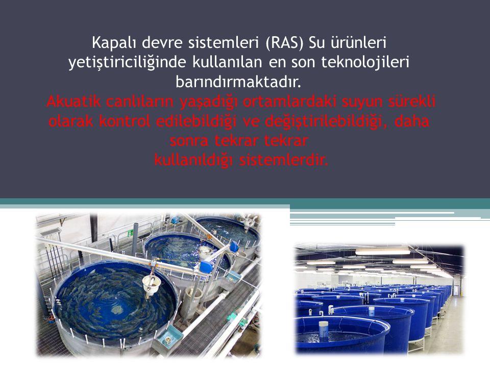 Kapalı devre sistemleri (RAS) Su ürünleri yetiştiriciliğinde kullanılan en son teknolojileri barındırmaktadır. Akuatik canlıların yaşadığı ortamlardak