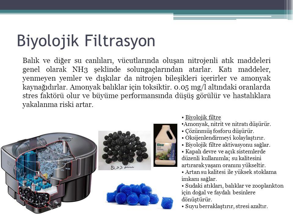 Biyolojik Filtrasyon Balık ve diğer su canlıları, vücutlarında oluşan nitrojenli atık maddeleri genel olarak NH3 şeklinde solungaçlarından atarlar. Ka