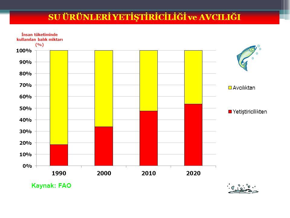 SU ÜRÜNLERİ YETİŞTİRİCİLİĞİ ve AVCILIĞI Kaynak: FAO