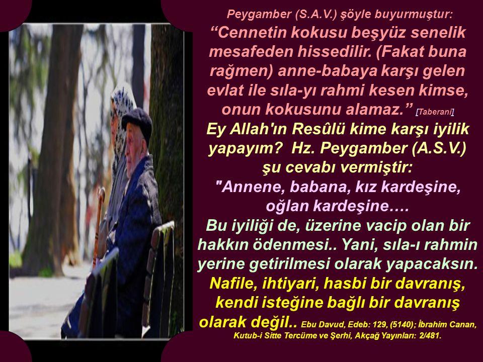 İsra suresi 23-24.Ayetler.. Rabbin şöyle emretti: Sadece Allah'a ibadet edeceksiniz.
