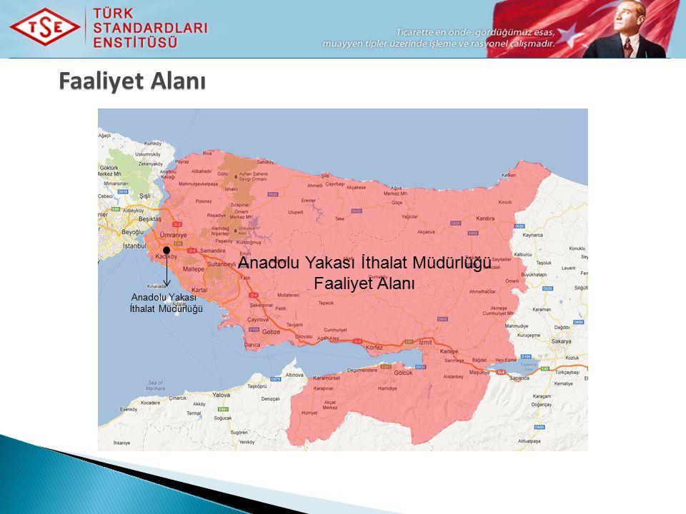 Faaliyet Alanı Anadolu Yakası İthalat Müdürlüğü Faaliyet Alanı Anadolu Yakası İthalat Müdürlüğü