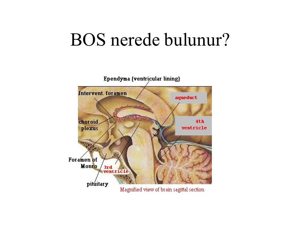 Aç iken alınan mide suyunda patolojik bulgular Patolojik residiumda kan, besin parçaları, lökositler, doku ve tümör parçaları, bulunabilir.