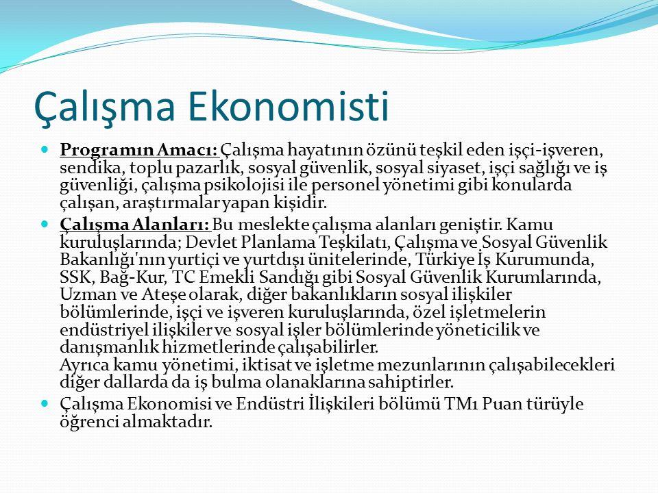 Çalışma Ekonomisti Programın Amacı: Çalışma hayatının özünü teşkil eden işçi-işveren, sendika, toplu pazarlık, sosyal güvenlik, sosyal siyaset, işçi sağlığı ve iş güvenliği, çalışma psikolojisi ile personel yönetimi gibi konularda çalışan, araştırmalar yapan kişidir.