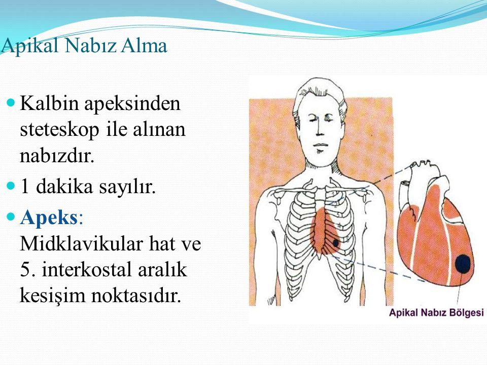 Apikal Nabız Alma Kalbin apeksinden steteskop ile alınan nabızdır. 1 dakika sayılır. Apeks: Midklavikular hat ve 5. interkostal aralık kesişim noktası