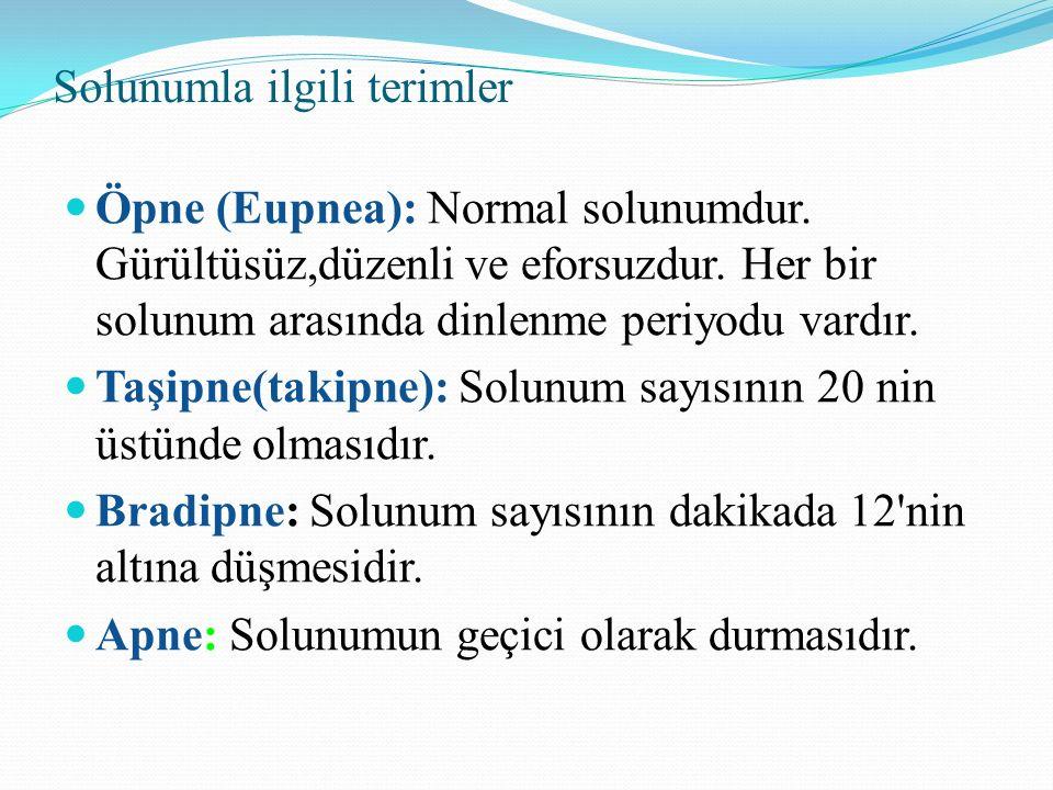 Solunumla ilgili terimler Öpne (Eupnea): Normal solunumdur. Gürültüsüz,düzenli ve eforsuzdur. Her bir solunum arasında dinlenme periyodu vardır. Taşip