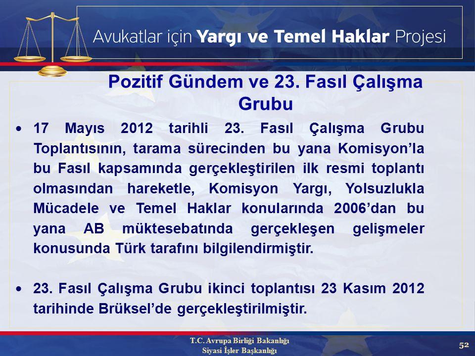 52 T.C. Avrupa Birliği Bakanlığı Siyasi İşler Başkanlığı Pozitif Gündem ve 23.