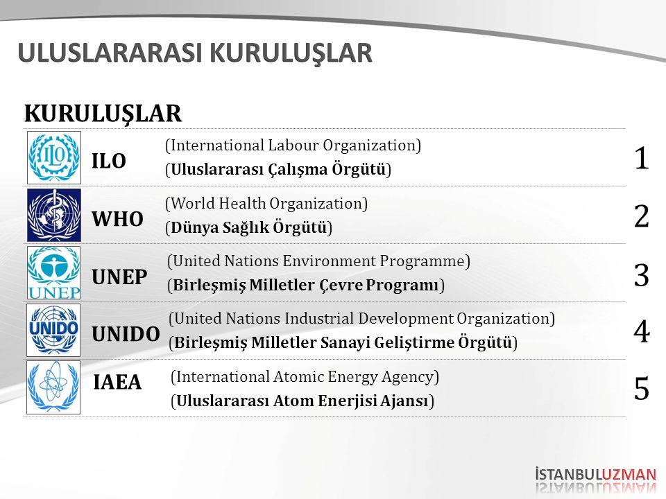 (International Labour Organization) (Uluslararası Çalışma Örgütü) (World Health Organization) (Dünya Sağlık Örgütü) (United Nations Environment Progra