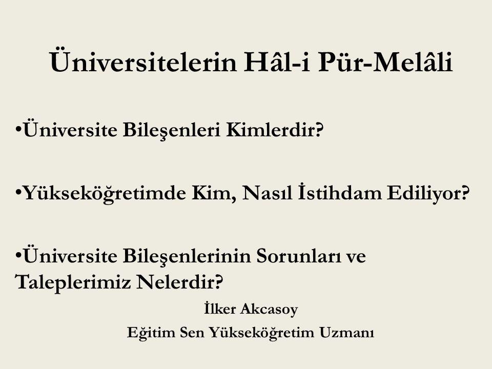Üniversitelerin Hâl-i Pür-Melâli Üniversite Bileşenleri Kimlerdir? Yükseköğretimde Kim, Nasıl İstihdam Ediliyor? Üniversite Bileşenlerinin Sorunları v