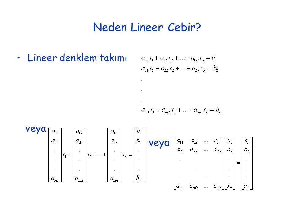 Neden Lineer Cebir Lineer denklem takımı veya