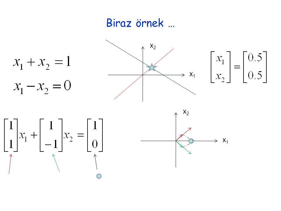 Biraz örnek … x1x1 x2x2 x1x1 x2x2