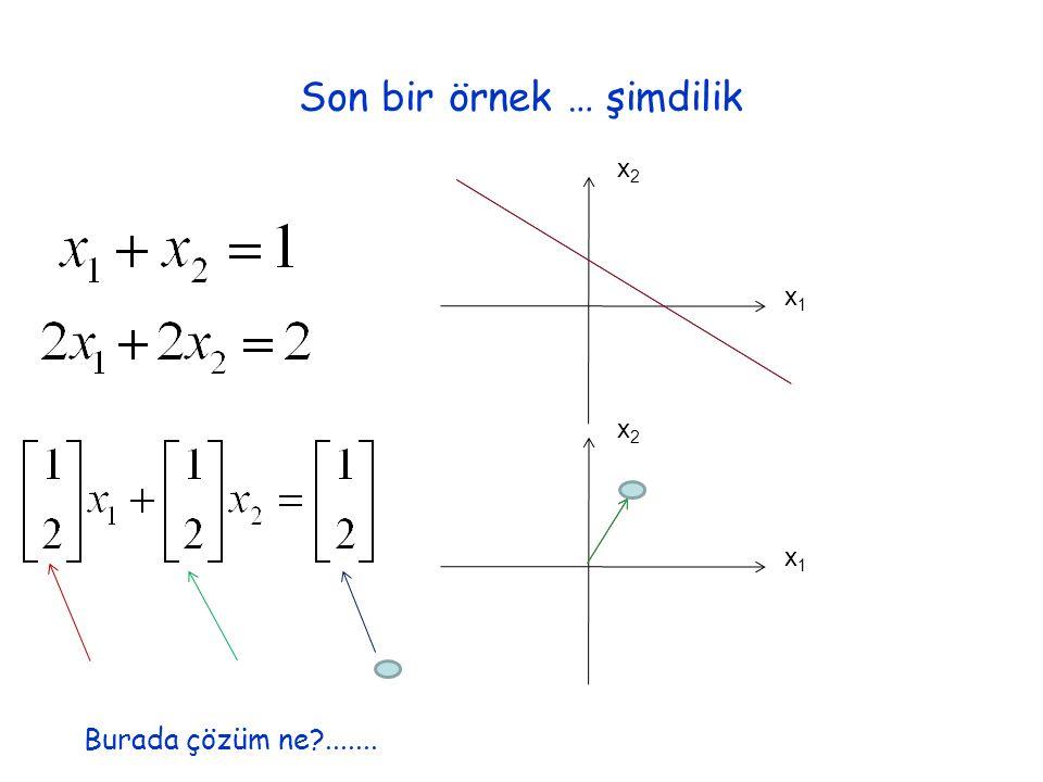 Son bir örnek … şimdilik x1x1 x2x2 x1x1 x2x2 Burada çözüm ne .......