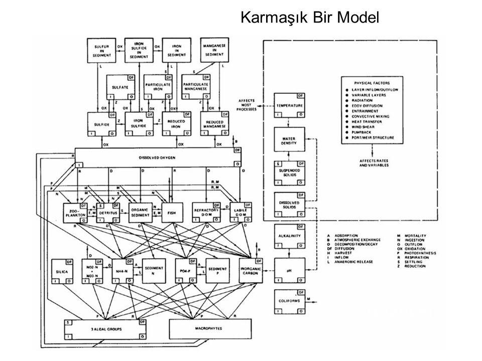 Karmaşık Bir Model CE-QUAL-R1