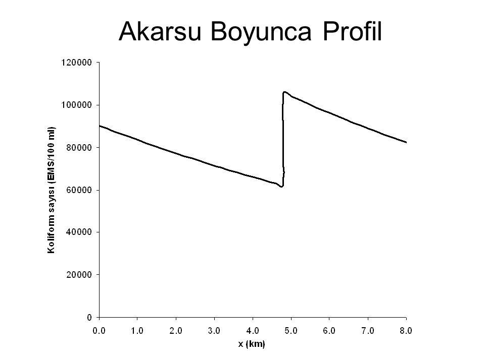 Akarsu Boyunca Profil