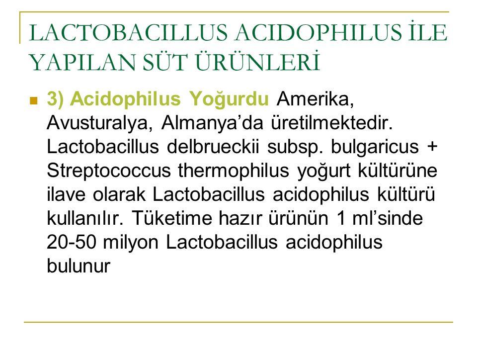 LACTOBACILLUS ACIDOPHILUS İLE YAPILAN SÜT ÜRÜNLERİ 3) Acidophilus Yoğurdu Amerika, Avusturalya, Almanya'da üretilmektedir. Lactobacillus delbrueckii s