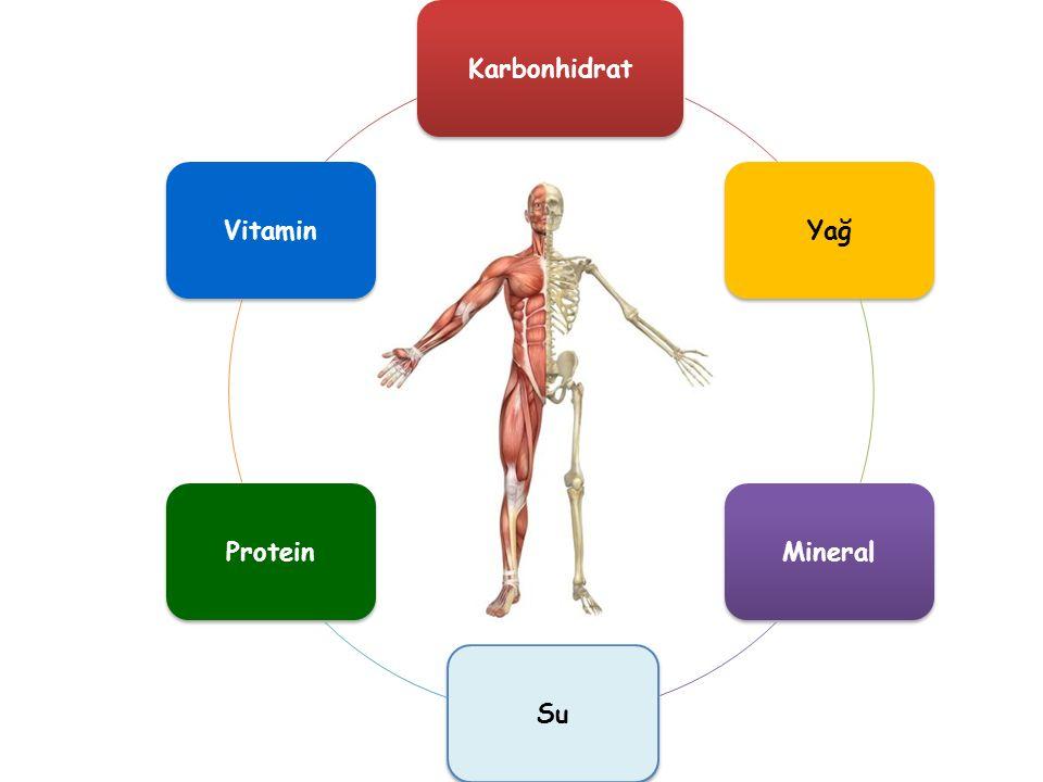 KarbonhidratYağMineralSuProteinVitamin